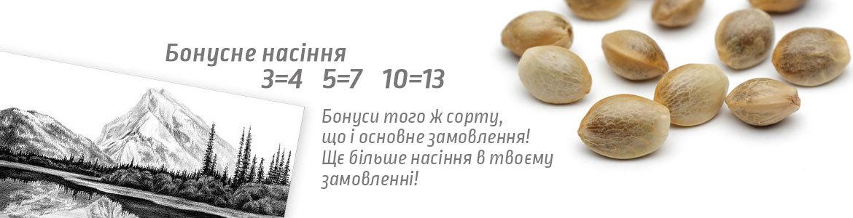 Bonus+-1170×300