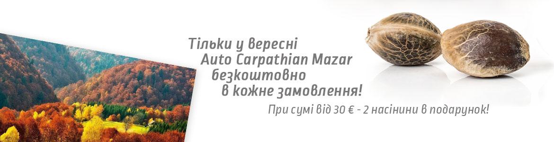 Bonus-Autumn-ukr-1170×300
