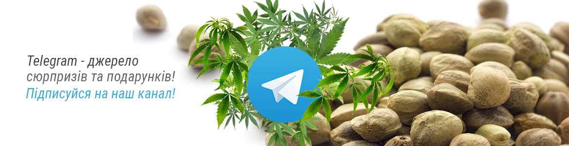 Telegram-ukr-1170×300